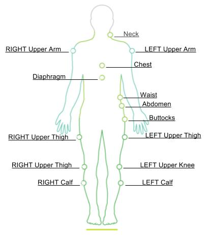 Body Measurements Chart